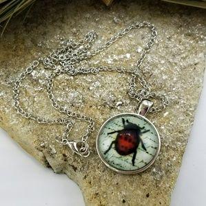 Jewelry - NWOT Ladybug Necklace Ladybug Pendant Jewelry